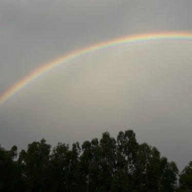 Depois da chuva…